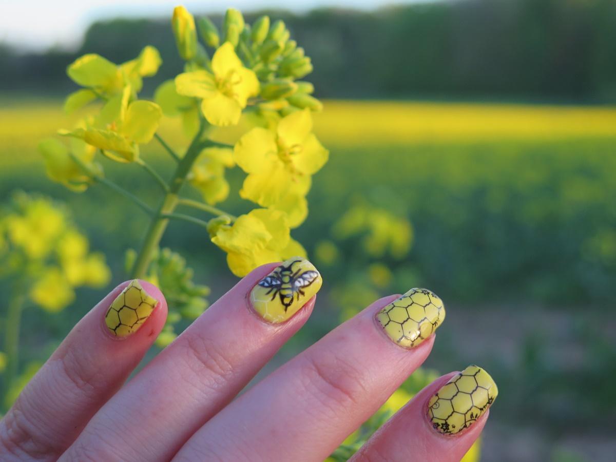 żółte paznokcie lato wakacje majówka urlop zdobienie stylizacja kwiaty pszczoła plaster miodu rzepak pole natura