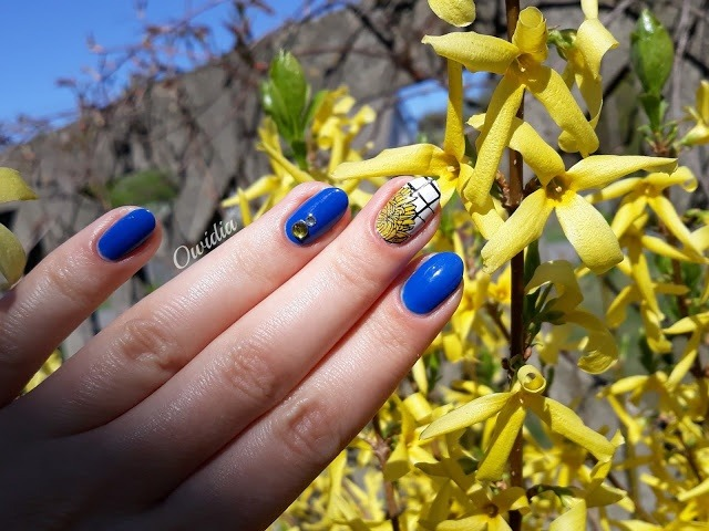 forsycje paznokcie żółte niebieskie